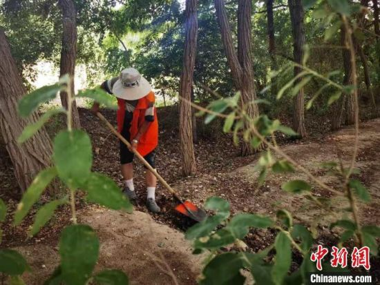 图为护林员清理杂草。 史静静 摄