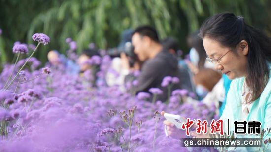 图为游客参观嘉峪关东湖公园花海。(资料图)魏建军 摄