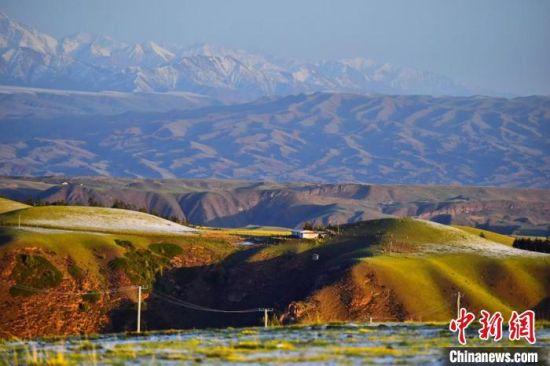 2020年6月3日清晨,祁连山下甘肃张掖市肃南裕固族自治县境内的草原如诗如画。(资料图) 武雪峰  摄