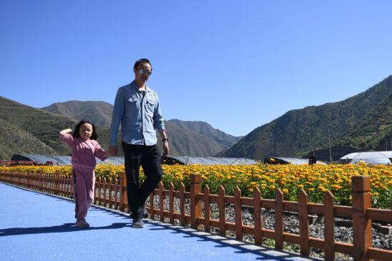 游客在甘肃甘南卓尼县木耳镇力赛村的花海游览(9月11日摄)。