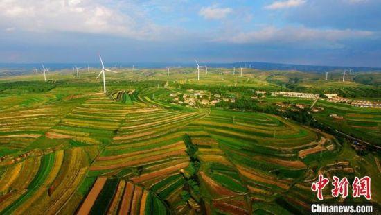 图为在甘肃定西市,远处的风力发电机组和近处的梯田自成一景。(资料图) 王金生 摄