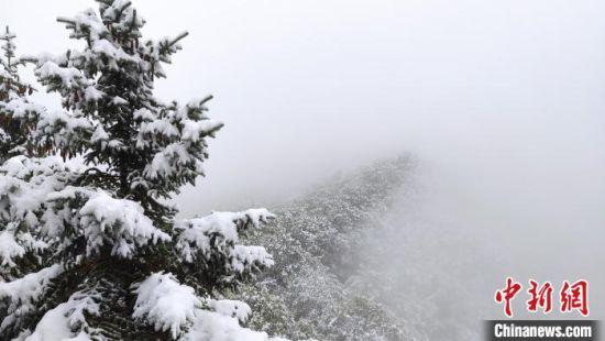 崆峒山被笼罩在浓浓的大雾中,云山雾罩,宛若仙境。 李维轩 摄