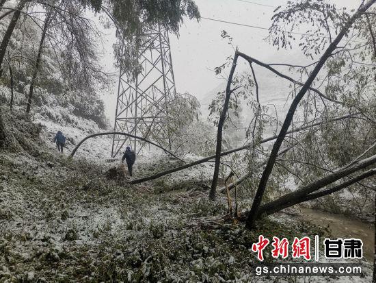 图为陇南地区雪后抢修场景。 张瑞红 摄