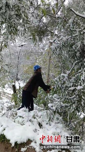 图为电力工人正在抖落压在线路上的积雪。
