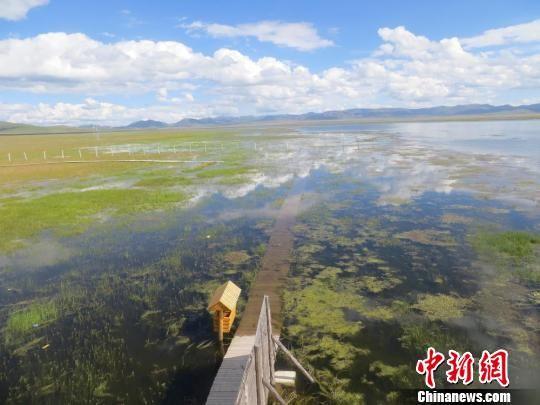 图为甘南尕海世界重要湿地。 材料图 王莉芳 摄