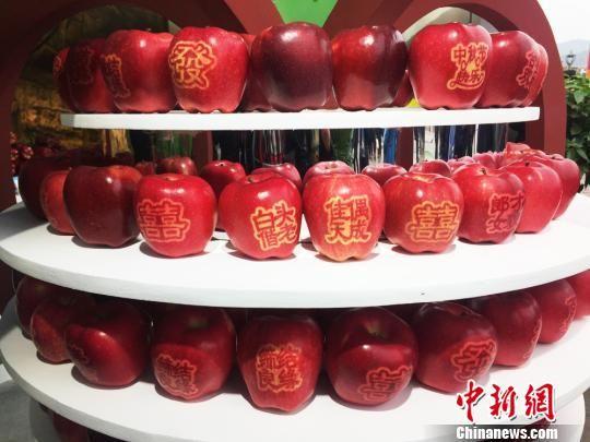 图为花牛苹果。 徐雪 摄