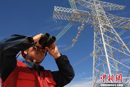 图为国网甘肃电力职工在查看电力线路。 秦铁飞 摄