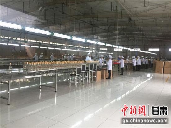 红川酒酿造技艺被纳入甘肃省非物质文化遗产。图为包装车间。史静静 摄