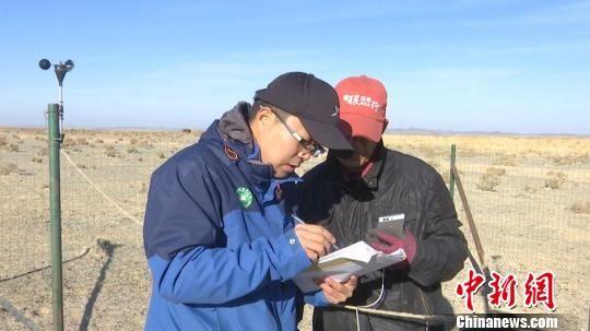 图为安西极旱荒漠国家级自然保护区工作人员采集普氏野马数据。 郑晓龙 摄