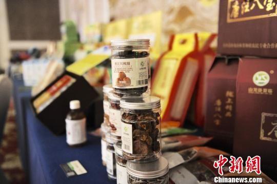 图为东乡县优质农特产品展示。(资料图) 崔琳 摄