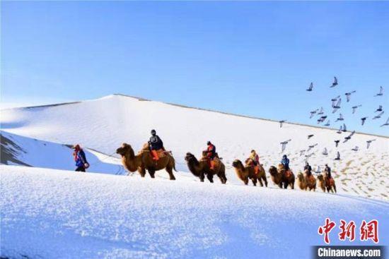 图为游人在银装素裹的鸣沙山上骑骆驼体验丝路冬景。(资料图) 钟欣 摄