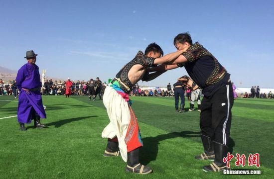 全国各地蒙古族摔跤手相聚肃北切磋技艺