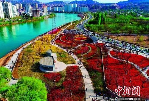 """ca88亚洲城文娱手机永靖""""蓝色黄河""""与百亩花堤相映促旅游开展"""